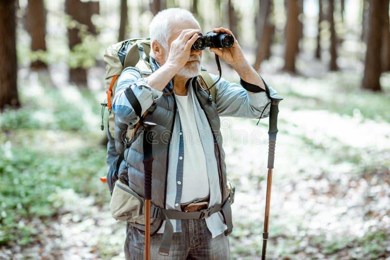 Hogere mens die met verrekijkers in het bos wandelen stock afbeelding