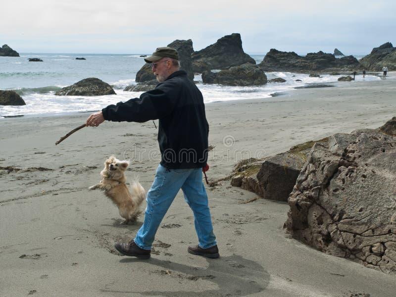 Hogere mens en hond op strand royalty-vrije stock afbeeldingen