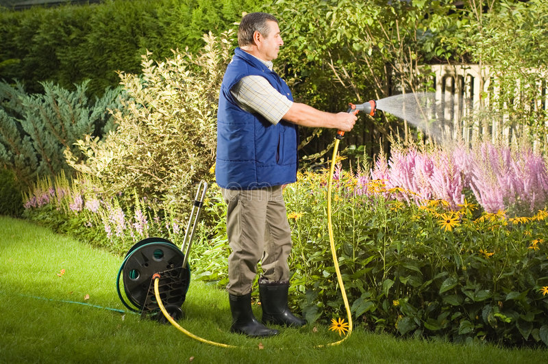Hogere mens het water geven bloemen in de tuin stock fotografie