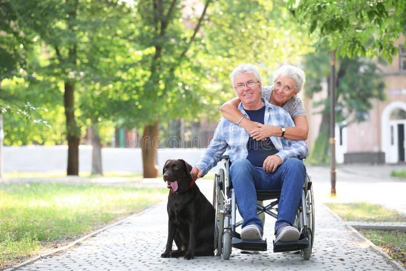 Hogere mens in rolstoel met zijn vrouw en hond in openlucht royalty-vrije stock foto's