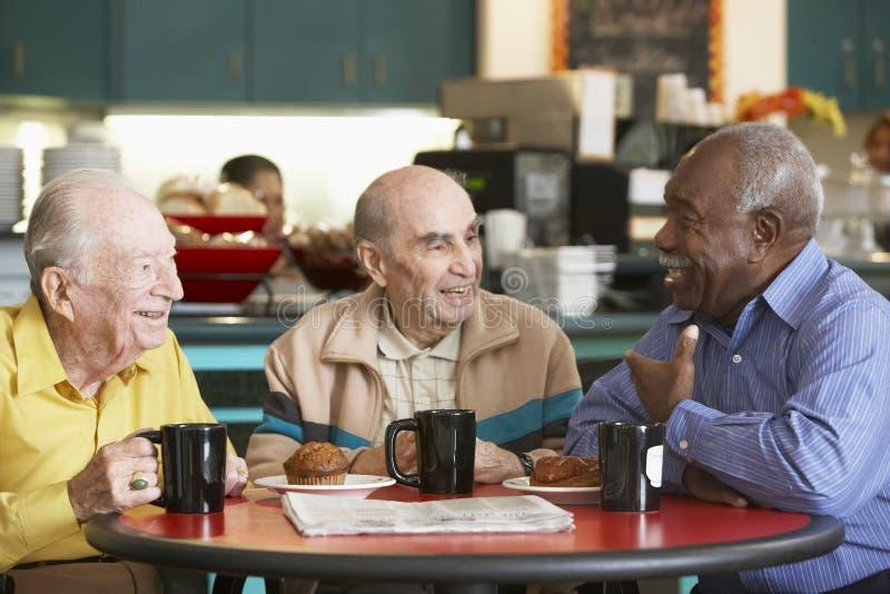 Hogere mensen die thee samen drinken stock foto