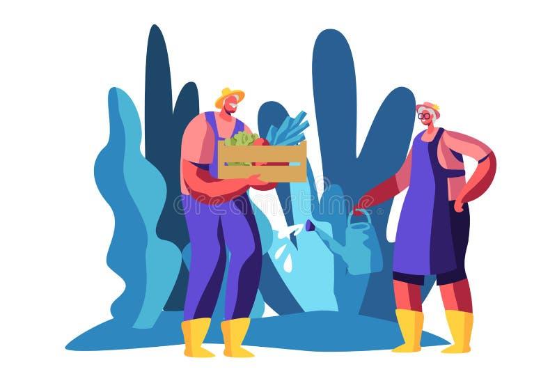 Hogere Mensen het Tuinieren Hobby Oude Vrolijke Karakters die Tuinbed water geven en de Plantaardige Oude Doos van de Mensengreep vector illustratie