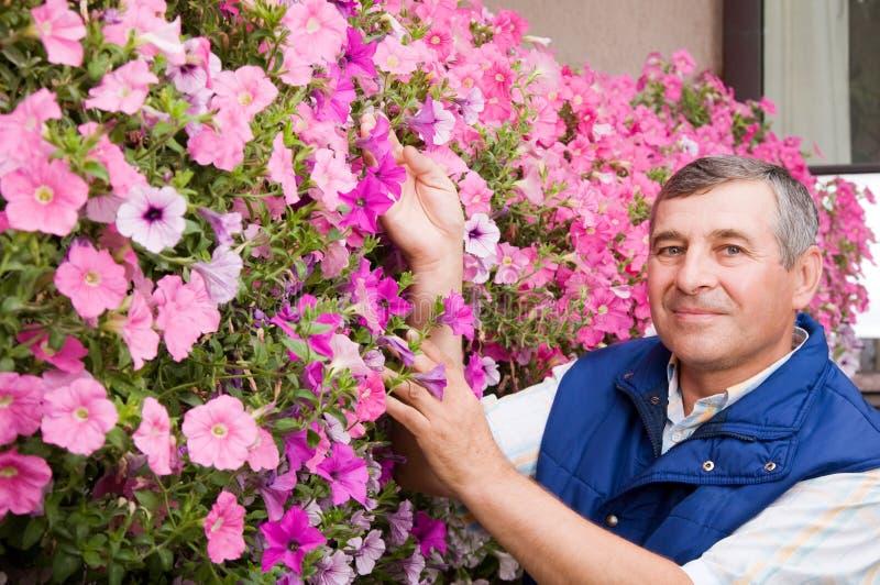 Hogere mensenbloemist die in de tuin werkt royalty-vrije stock afbeelding