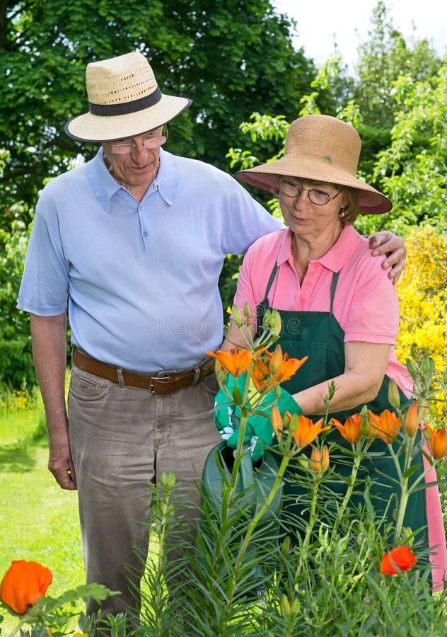 Hogere Paar het Water geven Bloemen samen in Tuin royalty-vrije stock afbeelding