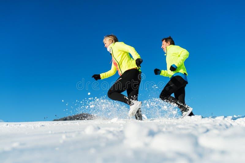 Hogere paaragenten die in de winteraard lopen De ruimte van het exemplaar royalty-vrije stock foto