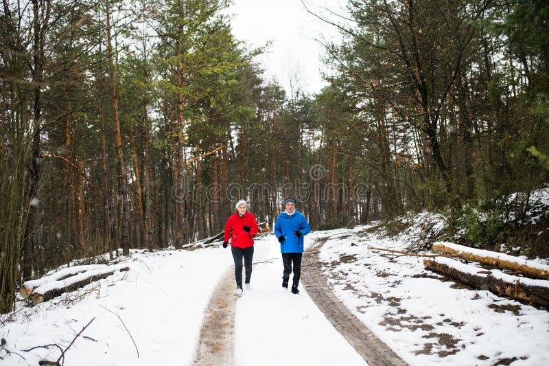 Hogere paarjogging in de winteraard royalty-vrije stock afbeelding