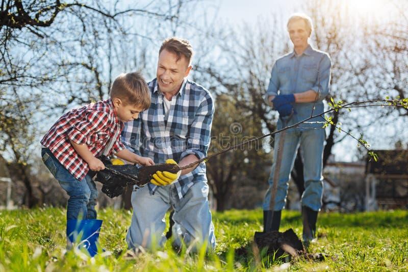 Hogere tuinman die op zijn zoon en kleinkind het plaatsen boom letten stock fotografie