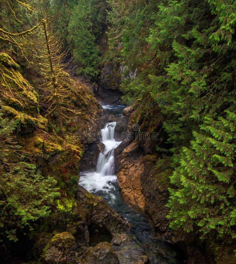 Hogere Tweelingdalingen, Washington State royalty-vrije stock fotografie
