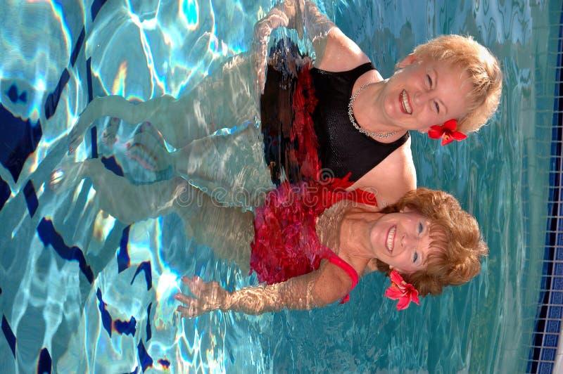 Hogere vrienden in de pool royalty-vrije stock afbeelding