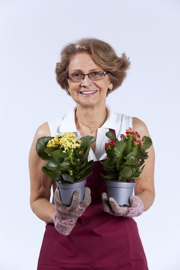Hogere vrouw die bloemen plant royalty-vrije stock foto's