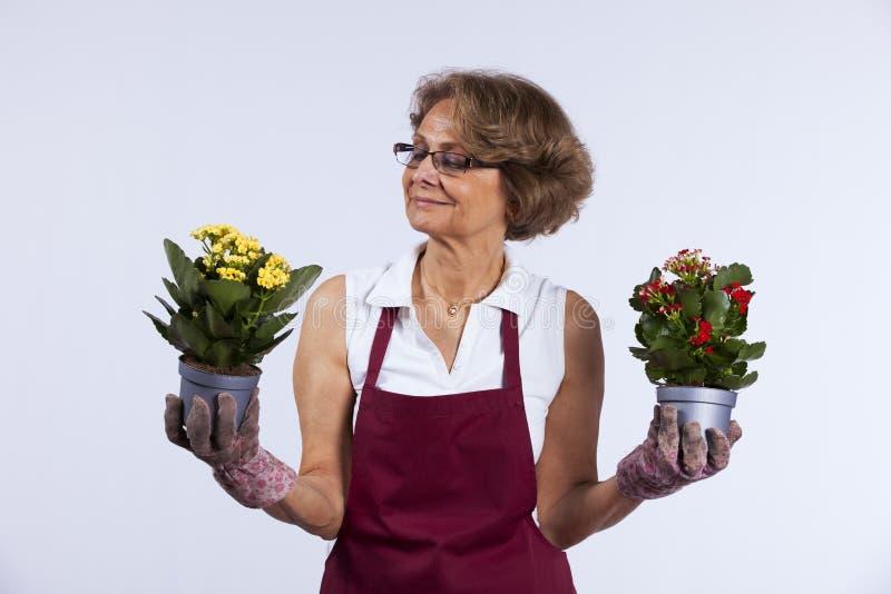 Hogere vrouw die bloemen plant royalty-vrije stock afbeeldingen