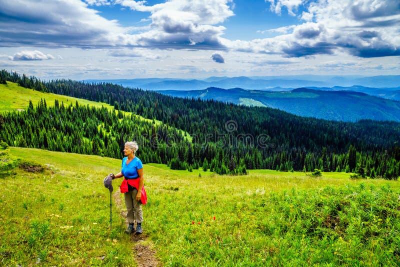 Hogere Vrouw die door Shuswap wandelen en van de Mening over Tod Mountain genieten royalty-vrije stock fotografie