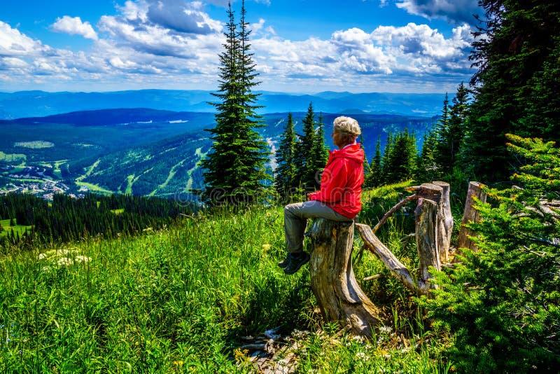 Hogere Vrouw die op een boomstomp tijdens een stijging door de berg alpiene weiden rusten met wilde Bloemen op Tod Mountain stock fotografie