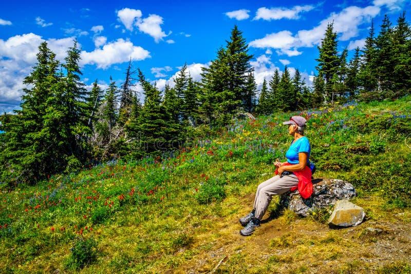 Hogere Vrouw die op een rots rusten en van de Mening over Tod Mountain genieten royalty-vrije stock fotografie