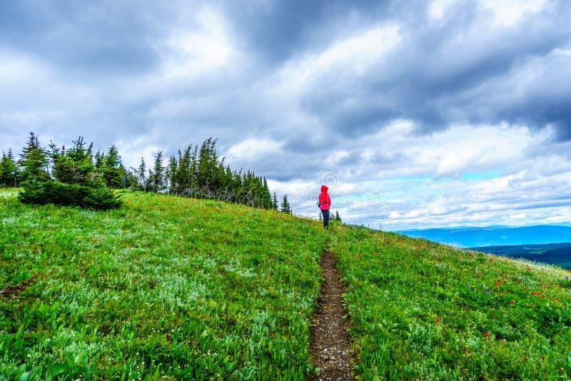 Hogere Vrouw die op Tod Mountain in de Shuswap-Hooglanden wandelen royalty-vrije stock afbeeldingen