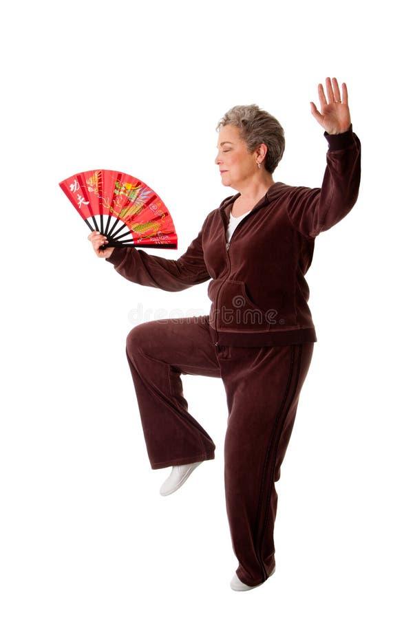 Hogere vrouw die Tai de oefening van de Yoga van de Chi doet royalty-vrije stock fotografie