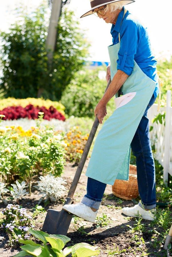 Hogere vrouw die in tuin werkt royalty-vrije stock afbeelding