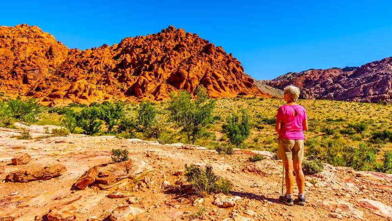 Hogere Vrouw die van de mening van de kleurrijke rotsen genieten tijdens een stijging op Rood Nationaal het Behoudsgebied van de  stock afbeelding