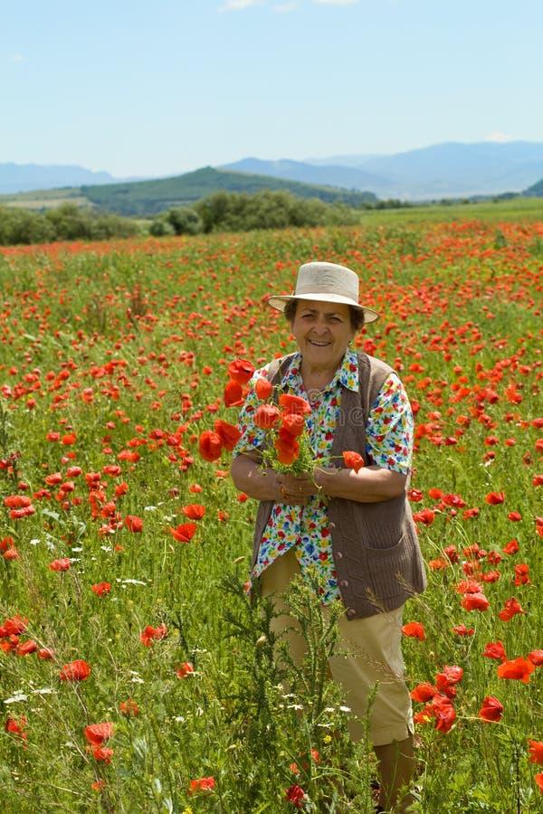 Hogere vrouw het plukken bloemen royalty-vrije stock afbeeldingen