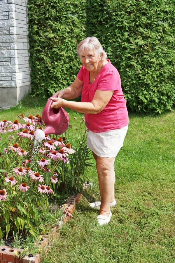 Hogere vrouw het water geven bloemen royalty-vrije stock afbeeldingen