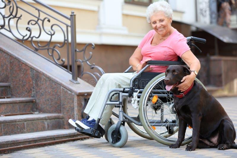 Hogere vrouw in rolstoel en haar hond dichtbij treden in openlucht stock afbeeldingen