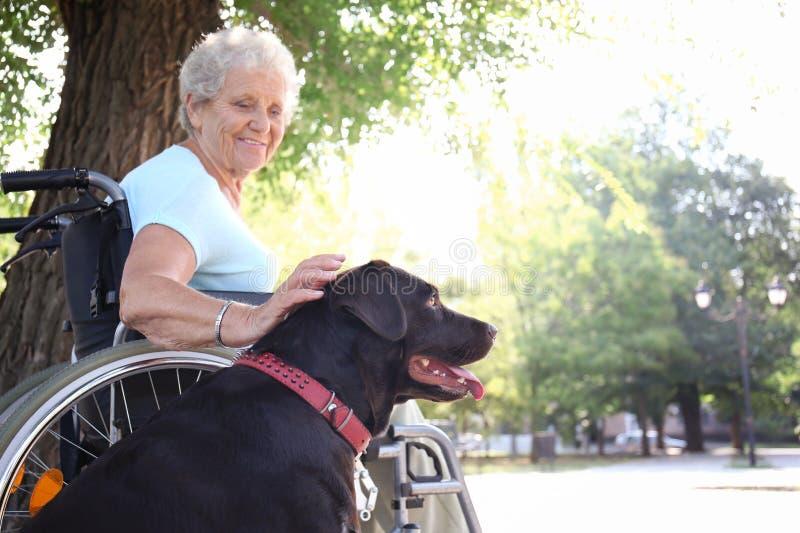 Hogere vrouw in rolstoel en haar hond in openlucht royalty-vrije stock afbeeldingen