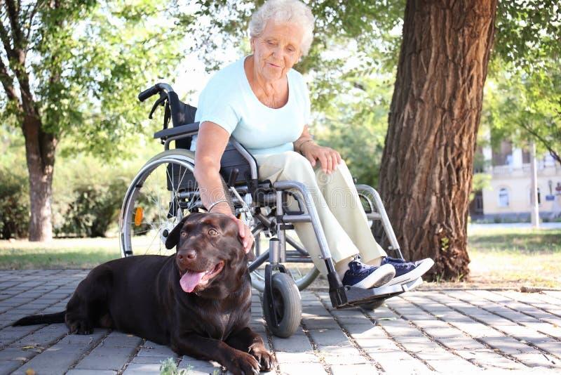 Hogere vrouw in rolstoel en haar hond in openlucht royalty-vrije stock foto