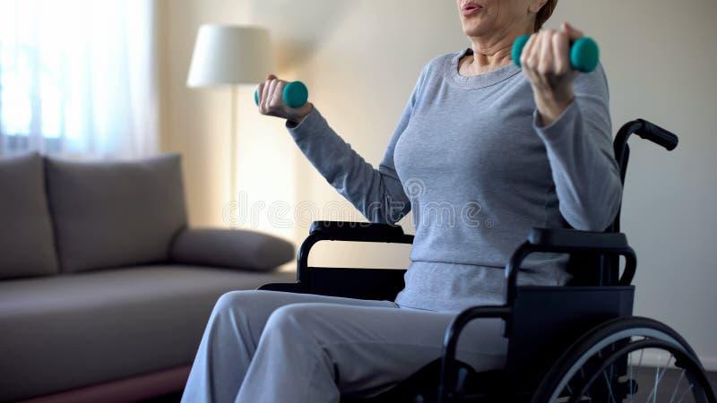 Hogere vrouw in rolstoel opheffende domoren, die oefeningen doen thuis, terugwinning royalty-vrije stock afbeeldingen