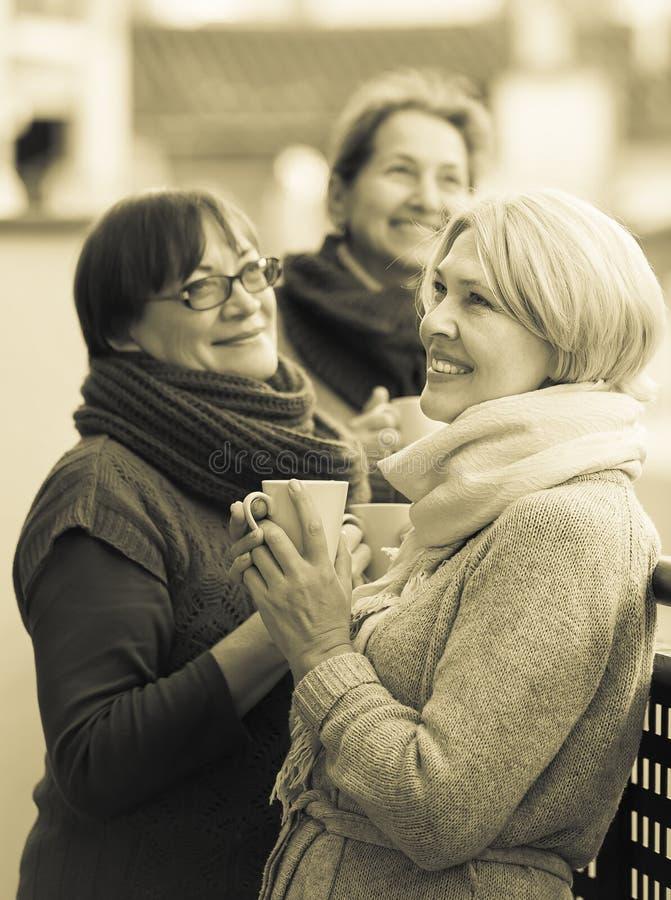 Hogere vrouwen die thee drinken bij balkon stock foto