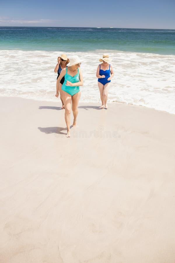 Hogere vrouwenvrienden die van water weggaan stock afbeeldingen