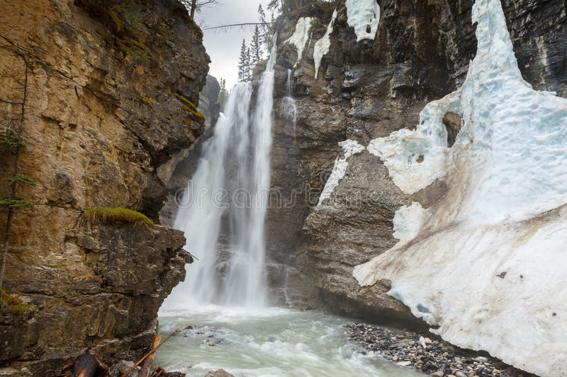 Hogere waterval in Johnson Canyon Canada stock foto's