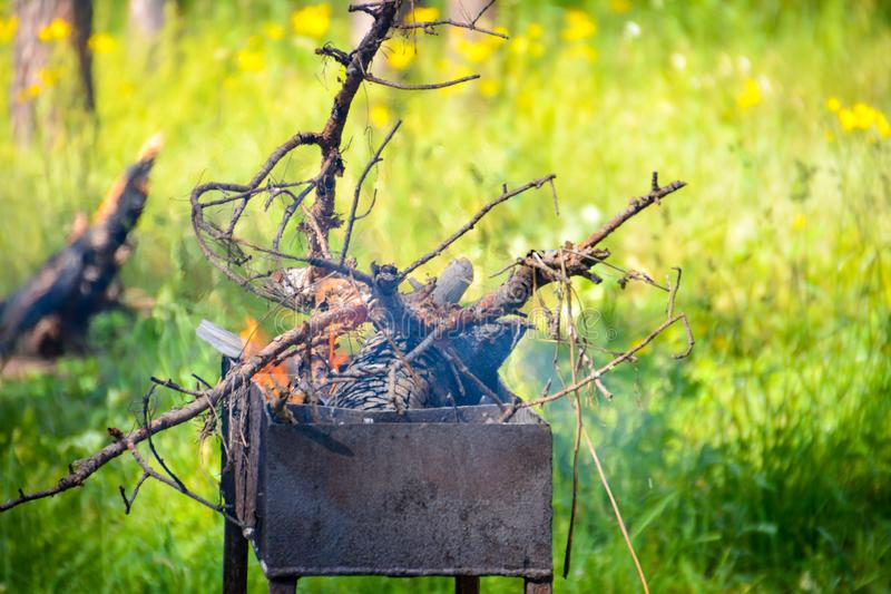 Hoguera cerrada-para arriba en barbacoa en el fondo del bosque del fuego y de la madera negra carbones blancos gris oscuro, negro fotos de archivo libres de regalías