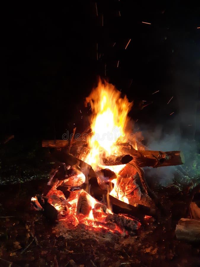 Hoguera en bosque en noche del otoño imagenes de archivo