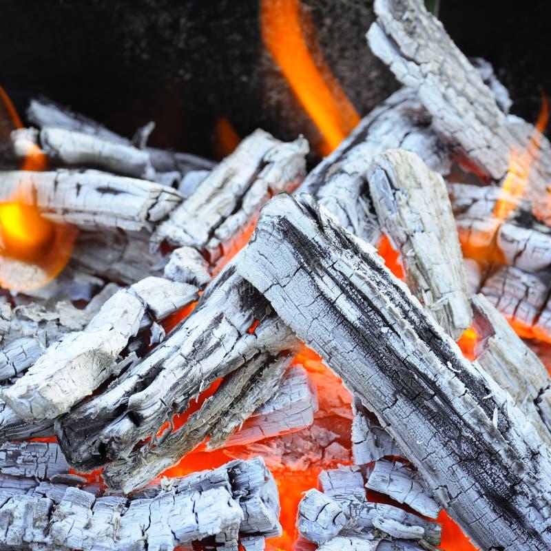 Hoguera y carbón de madera fotos de archivo