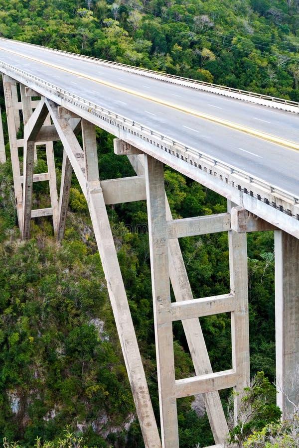 Hohe Brücke, die ein tropisches Tal kreuzt stockbild