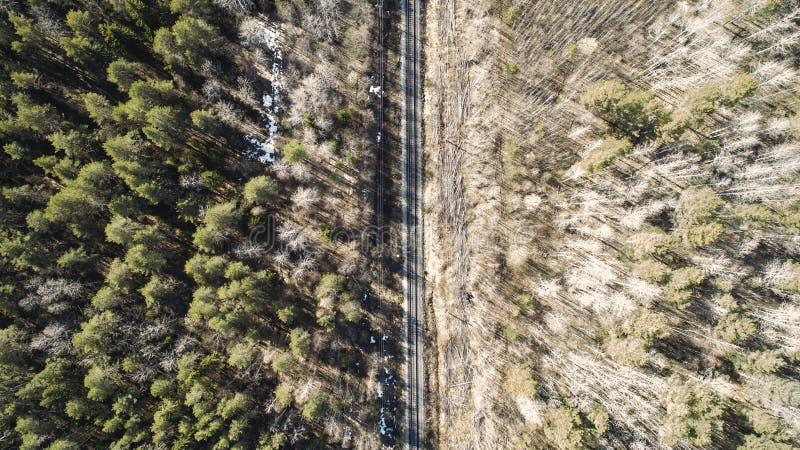 Hohe Luftbrummenansicht einer Eisenbahn ?ber den Fr?hlingswaldl?ndlichen Pl?tzen lizenzfreies stockfoto