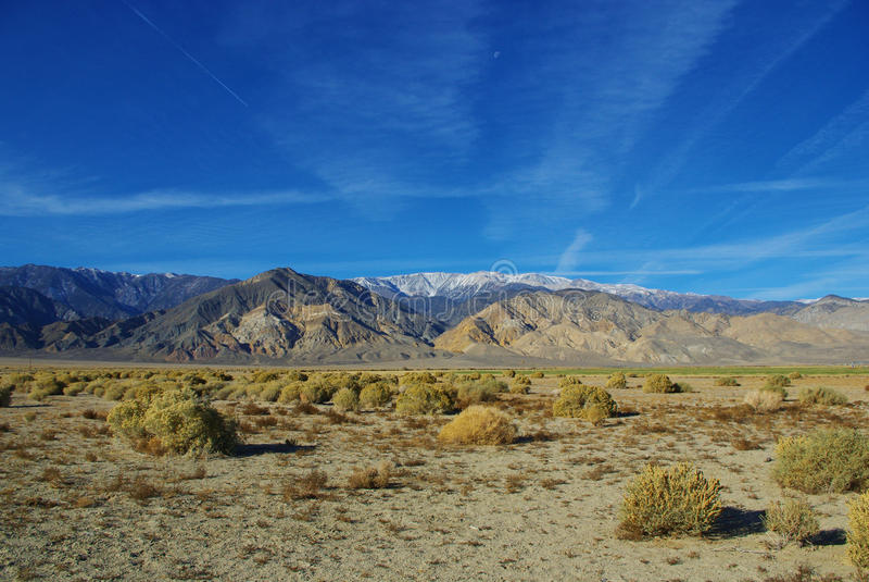 Hohe Wüste und weiße Berge, Nevada lizenzfreies stockbild