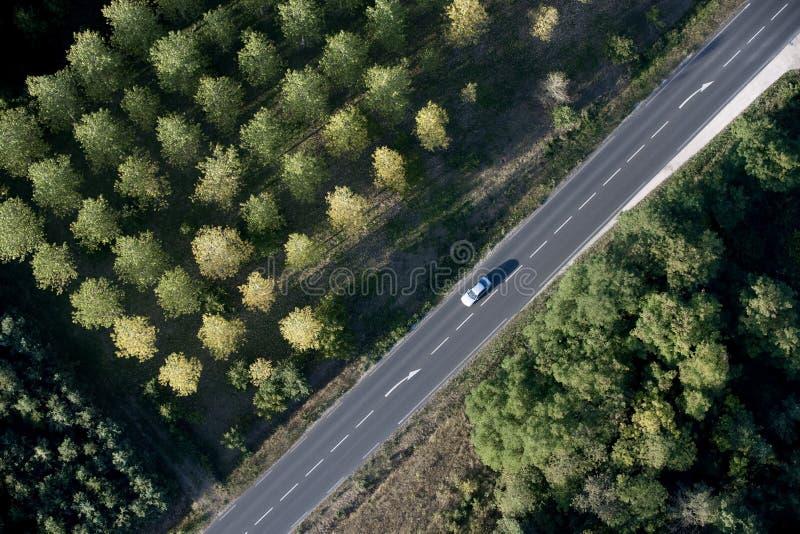 Hohe Winkelsicht des Autos auf Straße lizenzfreies stockbild
