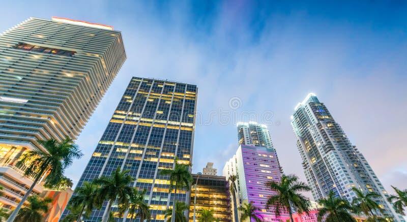 Hohe Wolkenkratzer von im Stadtzentrum gelegenem Miami - Florida - USA lizenzfreies stockbild