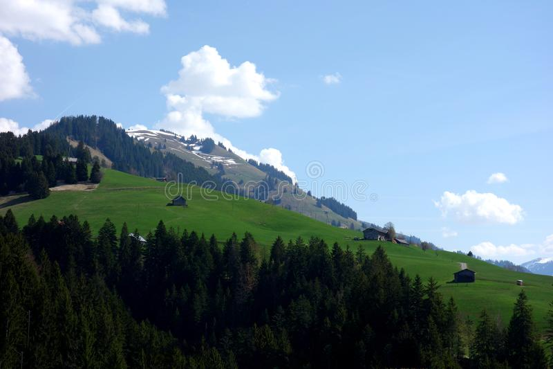 Hoher Gebirgsgrün-Weide die Schweiz lizenzfreie stockfotografie