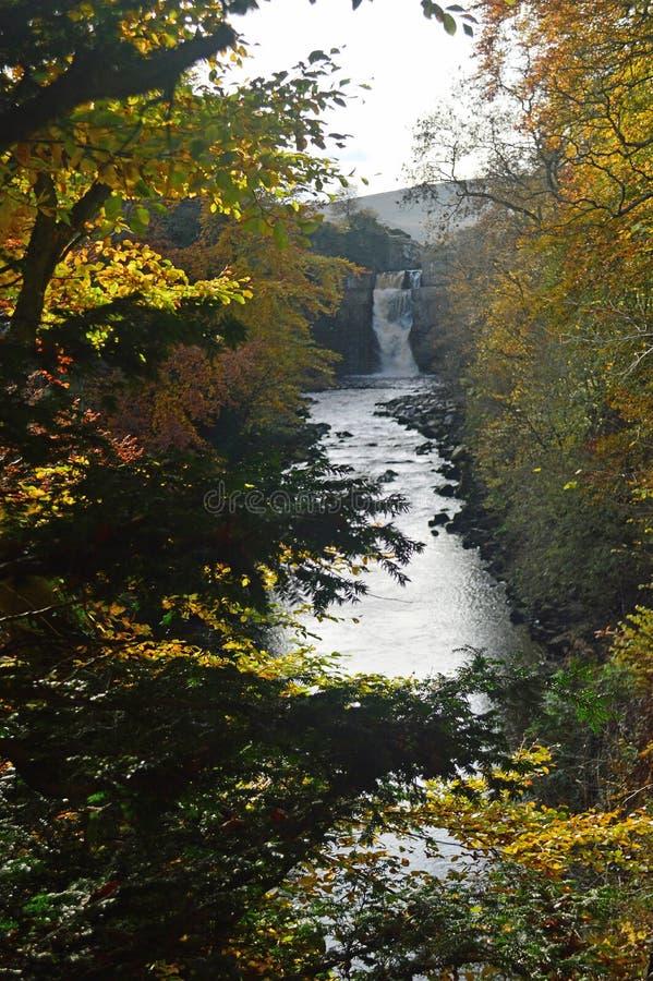 Hoher Kraft-Wasserfall auf den Fluss-T-Stücken und den Herbstbäumen stockbild