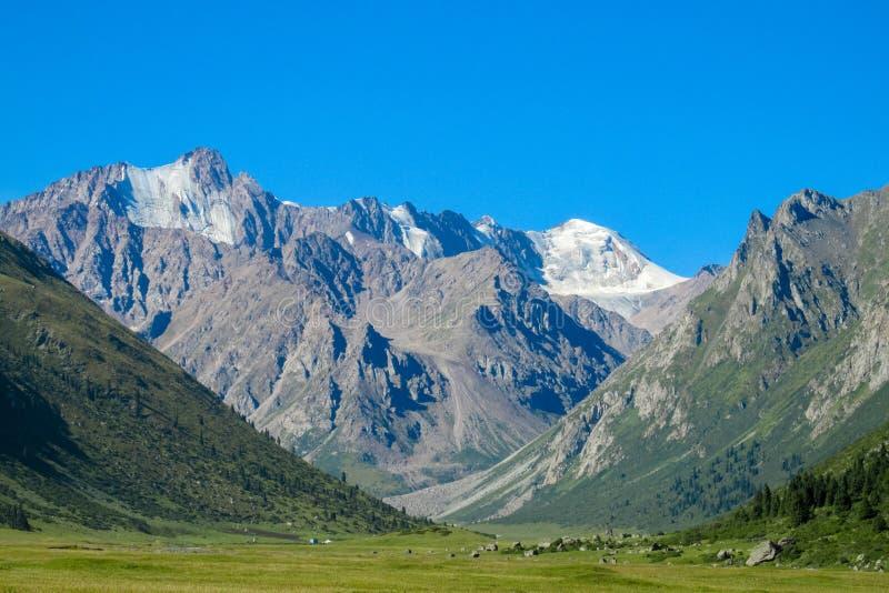 Hoher Schneegebirgsgletscher und grünes Tal in Tian Shan lizenzfreie stockfotografie