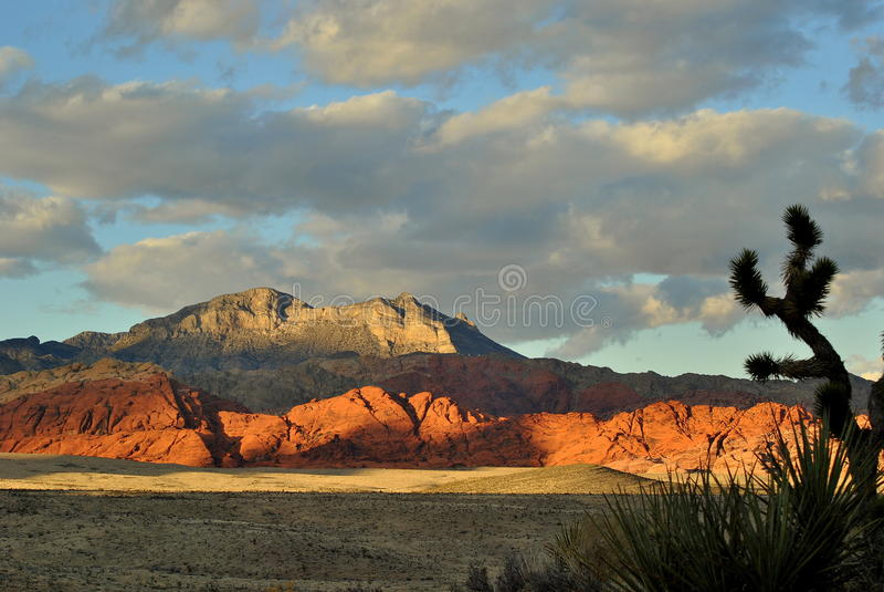 Hoher Wüsten-Berg lizenzfreies stockfoto