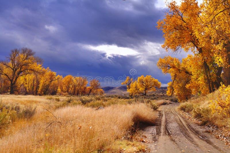 Hoher Wüsten-Herbst stockfotografie