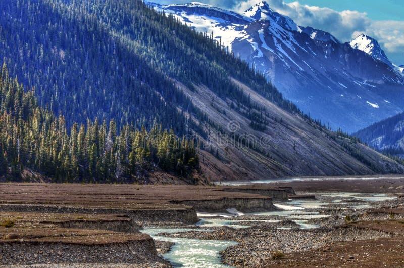 Hohes Alpine Creek lizenzfreie stockfotos