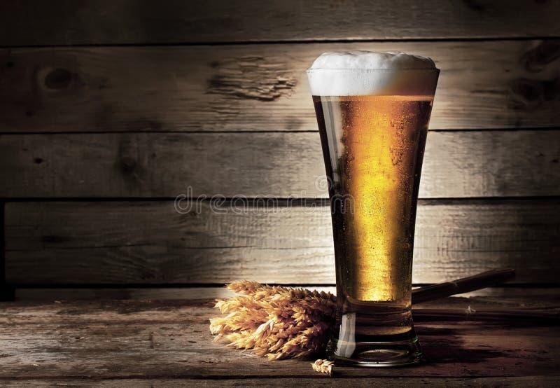 Hohes Bierglas mit Bier und den Ohren stockfoto