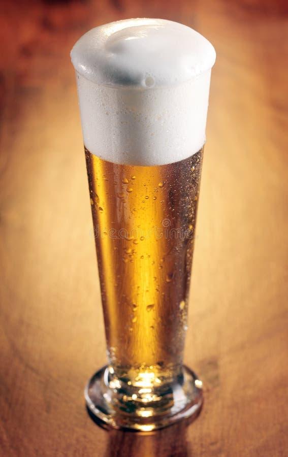 Hohes Glas Auffrischung des gekühlten Bieres stockbilder