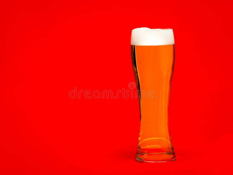 Hohes Glas helles Bier oder Bier mit Kopf auf rotem Hintergrund lizenzfreies stockbild