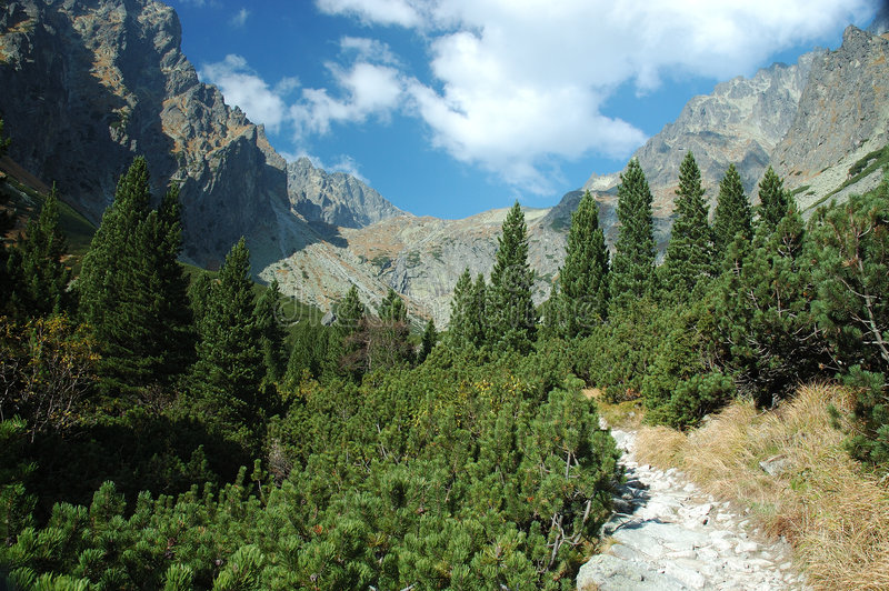 Hohes Tatras lizenzfreie stockbilder