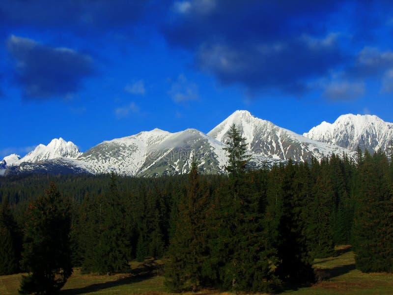 Hohes Tatras, Slowakei lizenzfreie stockfotos